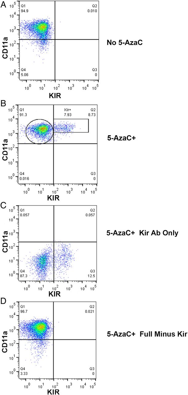 Characterisation Of An Epigenetically Altered Cd4 Cd28